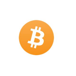 ビットコイン(bitcoin)の特徴・評判・今後の将来性